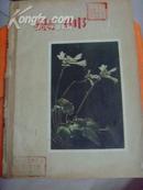 集邮1957全年合订本--图书馆装订