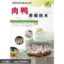 肉鸭养殖技术—新型农民培训丛书
