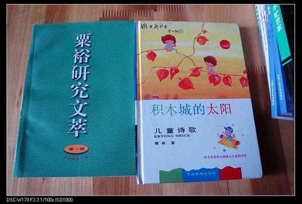 积木城的太阳:儿童诗歌