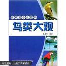 鸟类大观-新农村少儿百科