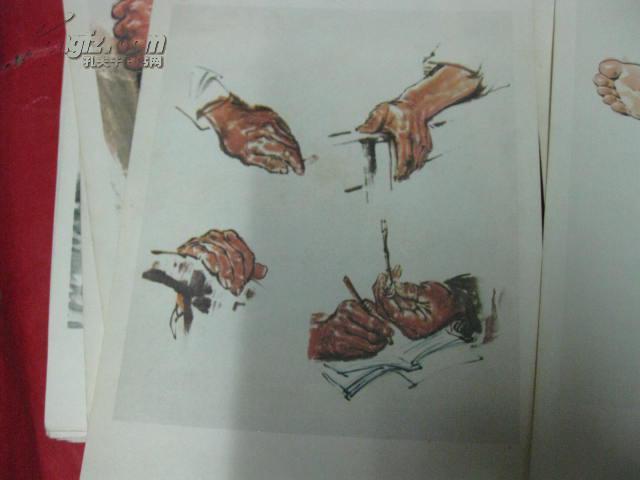 【图】绘画步骤图11张