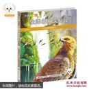 小豆子彩书坊·大自然是本童话书--金雕帅帅变形记(彩绘注音版)