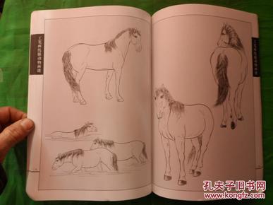 工笔画线描动物画谱:骏马篇 16开画册