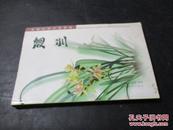 中国兰花名品档案:建兰