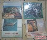 中国珍稀野生动物 华南虎 白鳍豚  金丝猴 大熊猫 纪念币   A4