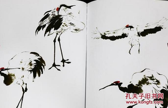 千姿百态画仙鹤 吴炳钧 刘昌华 国画写意禽鸟鸟类的画法技法步骤