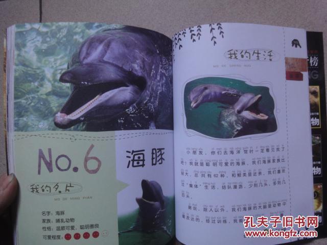 【图】动物之最排行榜:最可爱的动物
