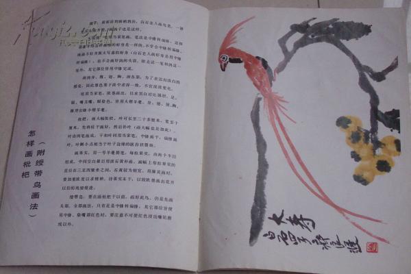 美术画册---怎样画葡萄,山茶花,枇杷,齐良迟绘著