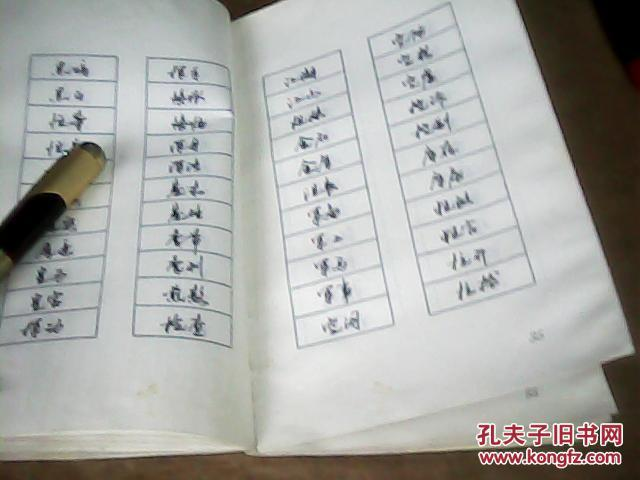 钢笔行书快速连写法(刘大卫书.边受一点潮.以图为准)图片