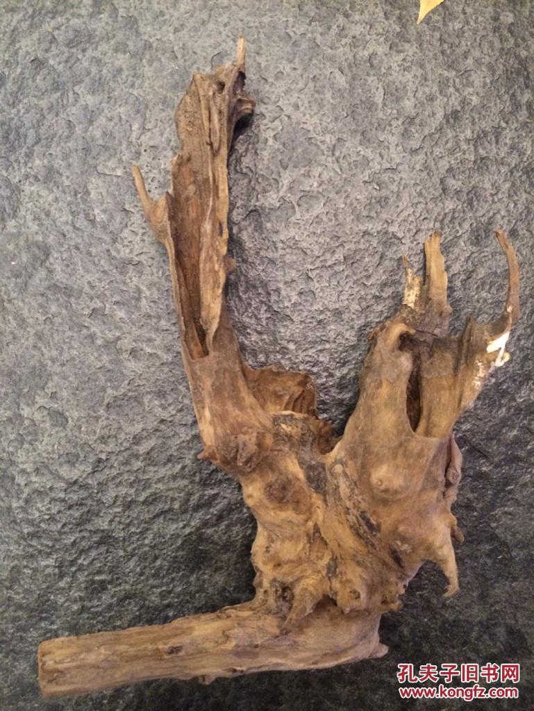 什么树根做根雕最好