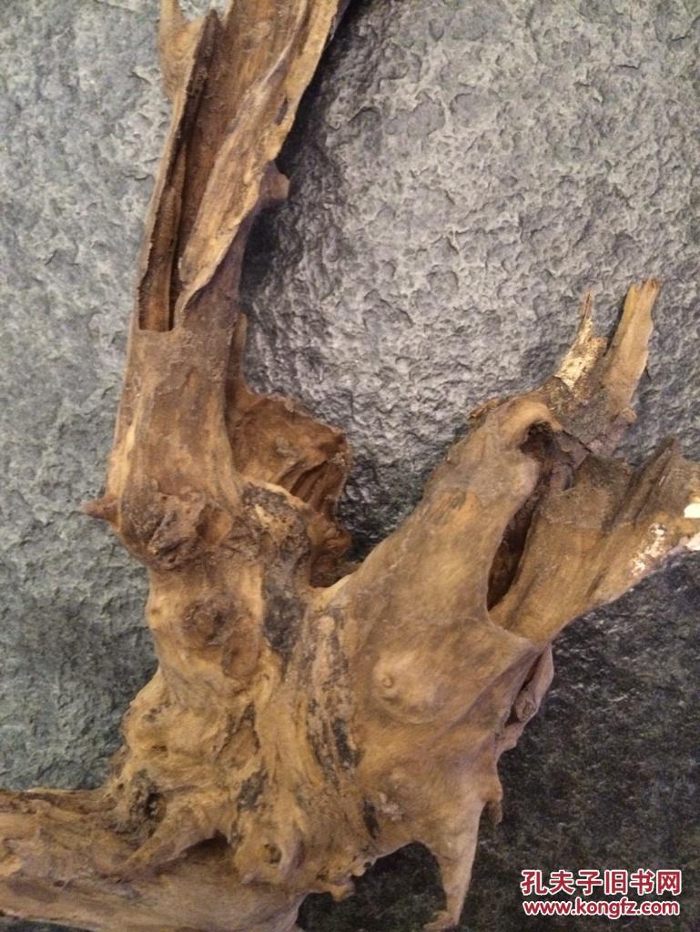 新挖根雕树根怎样防止开裂