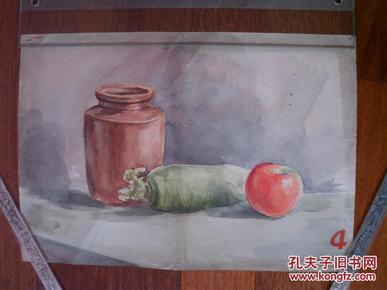手绘彩墨画 苹果胡萝卜  1955年