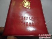 毛泽东思想是无产阶级文化大革命的行动指南 红塑皮