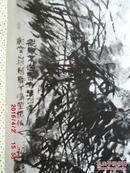 丛兰发幽崖  (国画  照片) 付印国画照片 :同意发表  郭石夫