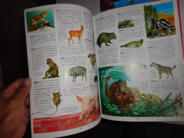 《动物世界彩绘百科全书》(全四卷 精装本 意大利dami