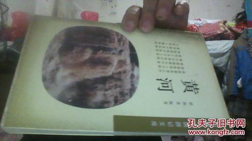 黄河_作者_简介:胡积善_东方出版社_孔夫子旧视频双飞.图片