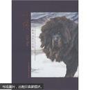 林跃藏獒油画作品集