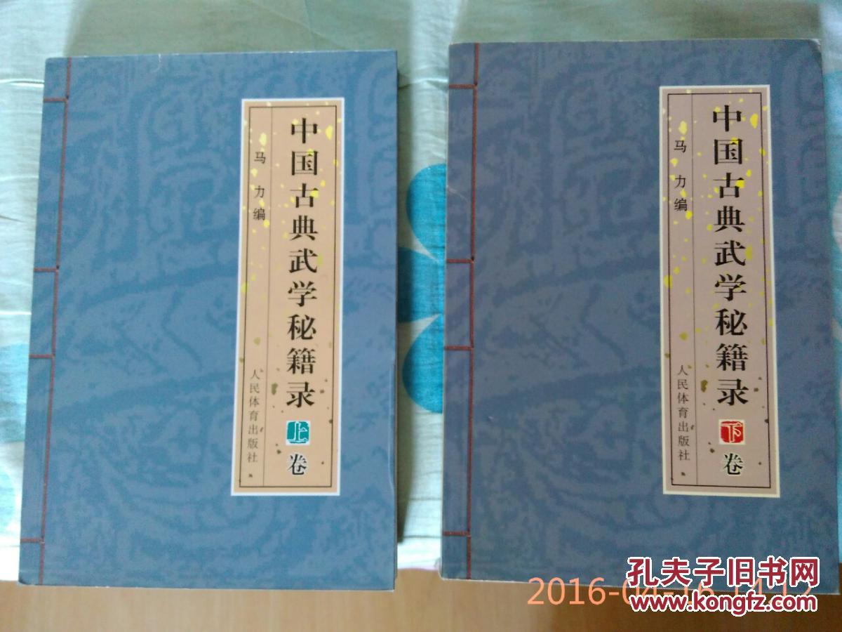 中国古典武学人类录(包v武学,秘籍两册全,首次披正常上下玩的通关游戏图片
