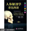 人体解剖学彩色图谱(第2版)
