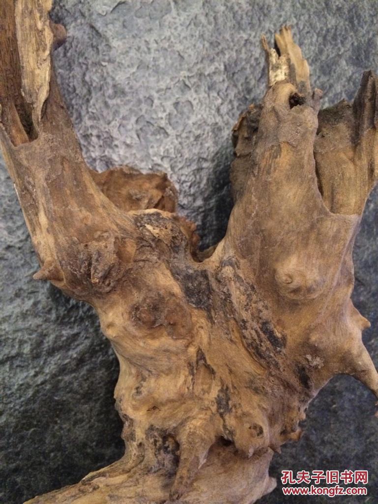 老树根 原木树根 根雕 树根摆件