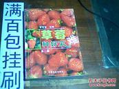 草莓种好不难(第二版)
