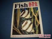 热带鱼--大16开