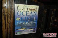 OCEAN LIFE ENCYCLOPEDIA,海洋生物百科全书(全新库存书,品相好,平装本,英文原版书)【№72-11】