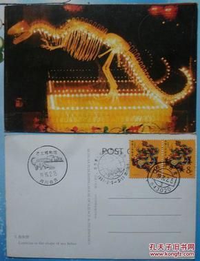 《自贡第三届国际<b>恐龙</b>灯会》<b>明信片</b>(1枚)(贴首轮双<b>龙</b>票)3