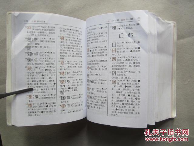 【图】普通话.粤音 商务新字典(软精装60开、2