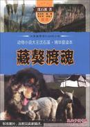 动物小说大王沈石溪·精华爱读本:藏獒渡魂
