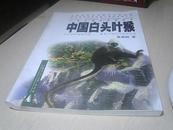中国白头叶猴【2002年一版一印】