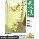森林报·夏(美绘全译本)