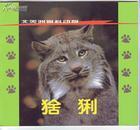 《北美洲猫科动物----猞猁-宝布猫-美洲狮》(1999年7月1版1印).