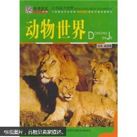 动物世界大洋马交配_动物世界