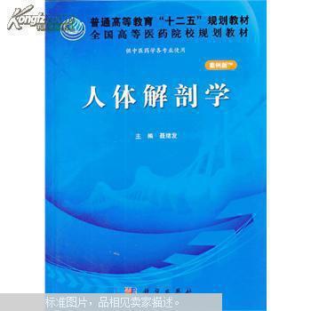 人体生理解剖学教材_人体解剖学(案例版)