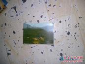 """韶山彩色照片(128开)7张加1片毛主席诗词""""到韶山""""  Y1箱子"""