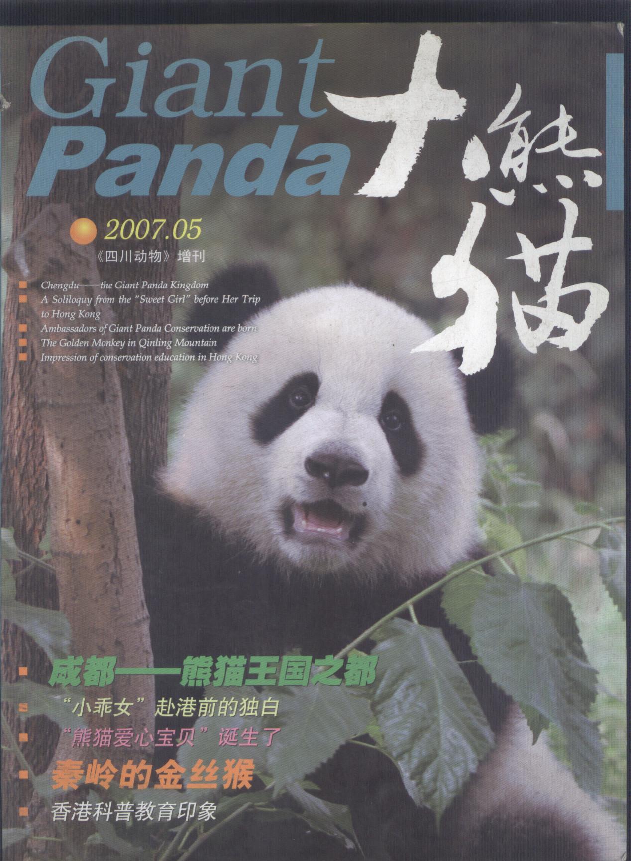 大熊猫 2007年笫5期《四川动物》增刊(图1)