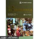 工程:issues challenges and opportunites for development