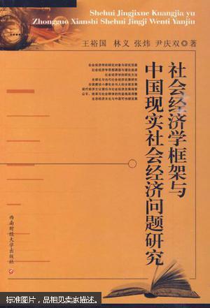 治经济学框架_社会经济学框架与中国现实社会经济问题研究