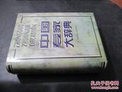中国专家大辞典  第9卷