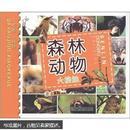 小笨熊·大眼睛小科学:森林动物大接触