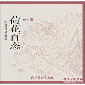 荷花百态 实用白描画稿 杨冬冬