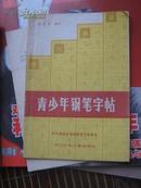 青少年钢笔字帖(中央电视台电视教育节目用书)