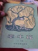 牵牛花(28开色彩插图本