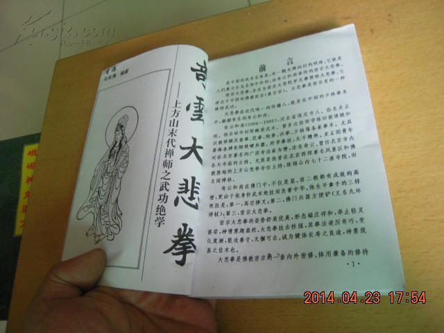 meifuyin_奇云大悲拳:上方山末代禅师之武功绝学(fuyinjian)