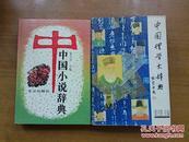 中国小说辞典
