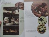 正版美食书 《舌尖上的中国》 16开全彩色图版 10品 有书套