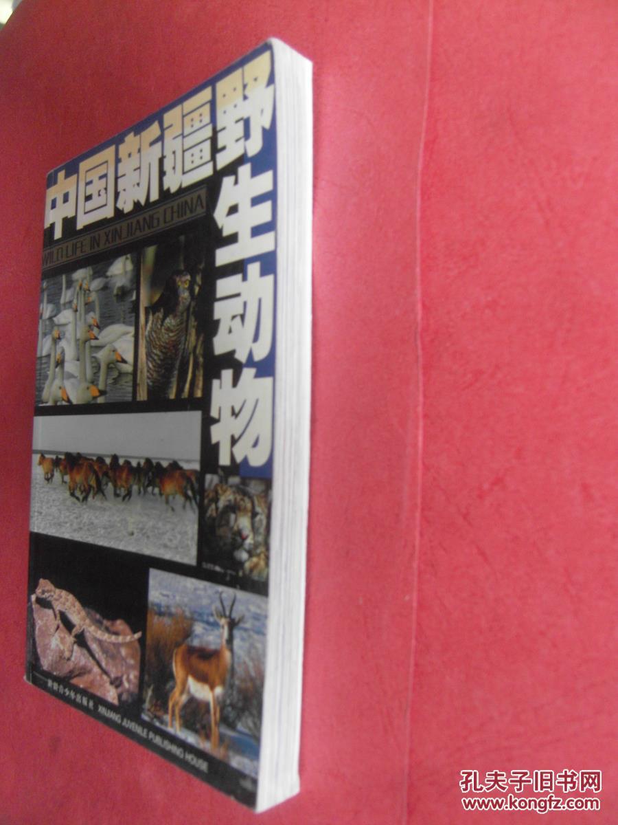 【包邮挂】中国新疆野生动物 【同类书出版有:新疆野生动物名典,新疆两栖爬行动物新疆啮齿动物志,新疆脊椎动物简志新疆南部的鸟兽新疆动物研究新疆鱼类志国家重点保护的新疆野生动物新疆蜱类志新疆鸟类分布名录】(图4)
