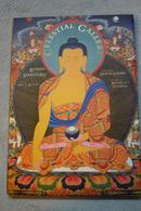 特價!!!原裝進口英文版:《天上的畫廊》 藏傳佛教佛像唐卡精品畫冊, 大幅,特價