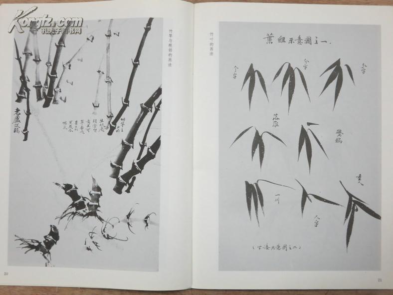 怎样画兰竹兰花竹子画法技法---中国画自学丛书图片